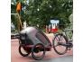 Hamax-biketrailer-stroller-RedCharacoal-two-children.jpg