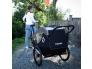 Hamax-traveller-child-bike-trailer-black-two-seats-.jpg